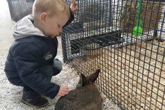 padraig-and-rabbit
