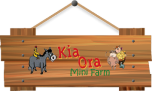 Best Santa Christmas Experience Mini Farm Family Fun Gorey Wexford Ireland